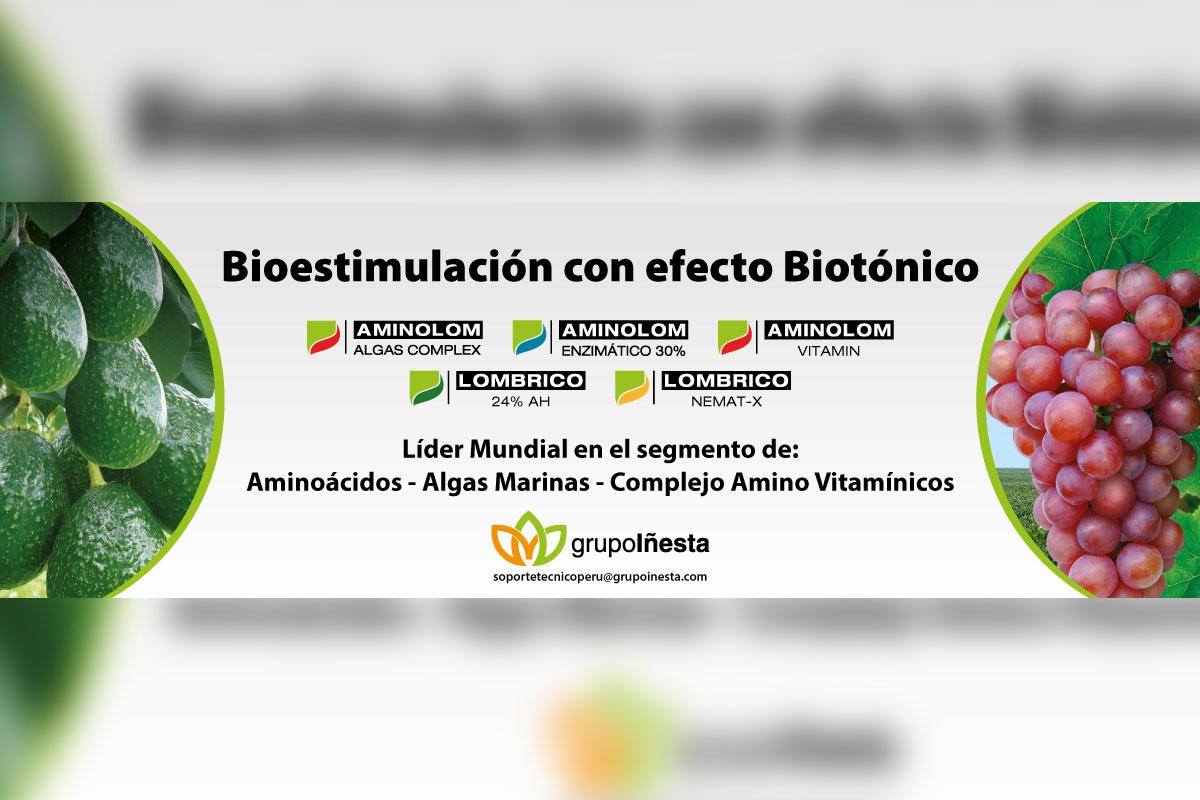 Grupo Iñesta inicia operaciones en Perú