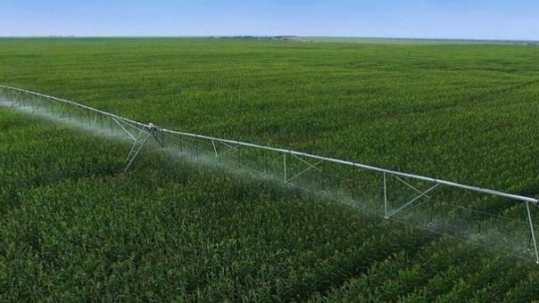 Existe un proceso de concentración de tierras impulsado por las irrigaciones