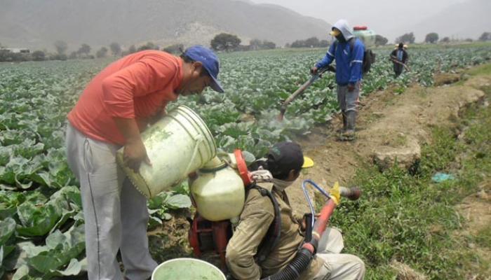 """""""Es necesaria una acción política de regulación estricta del comercio y uso de agroquímicos en..."""