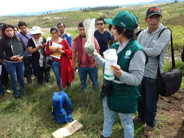 Senasa realiza acciones de prevención y monitoreo para evitar contaminación por plaguicidas en pro...