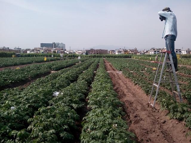 "Estudiantes de agronomía podrán acceder a beca para taller de ""Detección de estrés temprano en los cultivos a través de cámaras térmicas"""