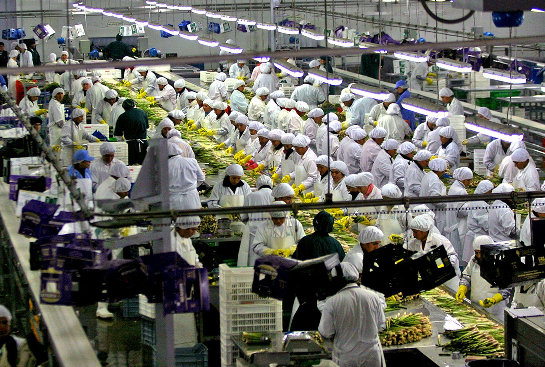 Minagri: Agroexportaciones peruanas sumaron US$ 3.275 millones entre enero y julio del presente año