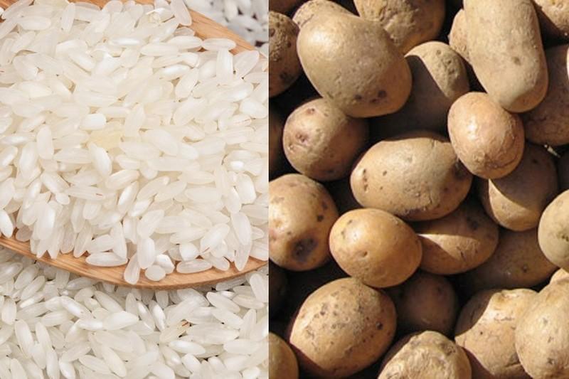 Nuevas variedades de papa y arroz se lanzarán en diciembre